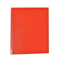 orange Lizard Journal